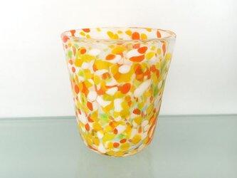 彩グラス(Citrus03)の画像