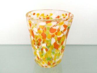 彩グラス(Citrus04)の画像