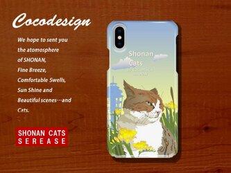 湘南Cats iPhone・スマホカバー 猫の風景3 ハンサムトラ猫の画像