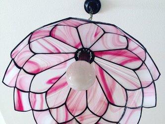 花びらのランプ (yumi saiki)の画像
