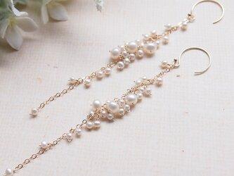 【再販】white flower #4(ピアス/イヤリング 14kgf)の画像
