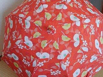 朱色が鮮やかな椿柄の日傘の画像
