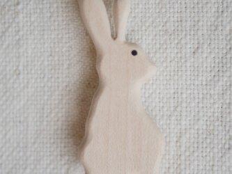 rabbit2の画像