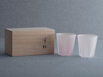 底に描かれたサクラサク桜模様-サクラサクロックグラスの画像