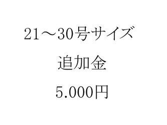 【受注制作用】21~30号サイズの5000円追加金の画像