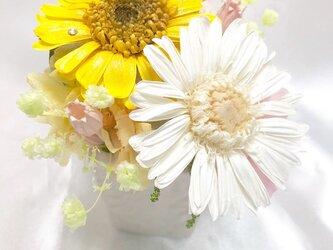プリザーブドフラワー/黄色と白のガーベラアレンジ【リボンラッピング付き】の画像