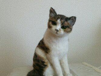 キジ白猫立体羊毛フェルトの画像