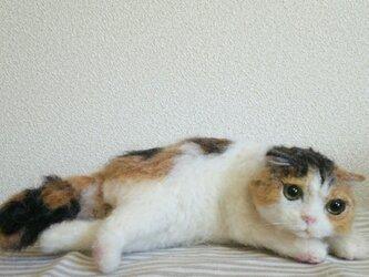 三毛猫立体伏せポーズ羊毛フェルトの画像