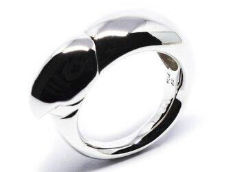 ラブバードくちばしリングSV925【Pio by Parakee】Lovebird beak ringの画像
