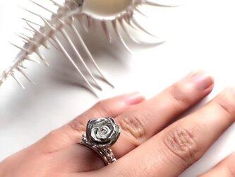 朝露のバラのリング(SV925、9号)の画像
