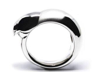 コザクラインコおでこ・くちばしリングSV925【Pio by Parakee】Lovebird beak ringの画像