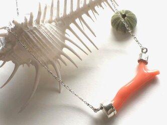 枝珊瑚のネックレス(SV925、珊瑚)の画像