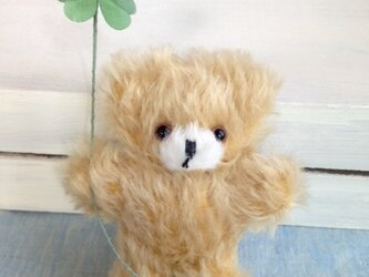 クマのpippiクローバー(ぬいぐるみ)の画像