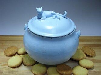 アイスブルー・クッキージャー・ニャンコー6の画像