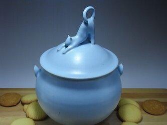 アイスブルー・クッキージャー・ニャンコー8の画像