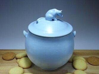 アイスブルー・クッキージャー・ニャンコー9の画像