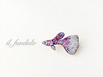 夢見るグッピーブローチ紫(ボックス入り)の画像