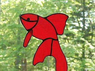 ステンドグラス 金魚のサンキャッチャーの画像