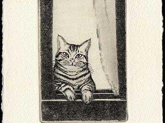 窓から猫が/ 銅版画 (作品のみ)の画像