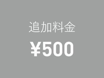 追加料金 ¥500の画像