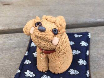 【わんこシリーズ】トイプードルの置物 レッド トイプー 陶器の画像
