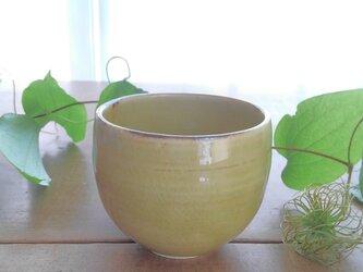 湯呑み茶碗 よもぎの画像