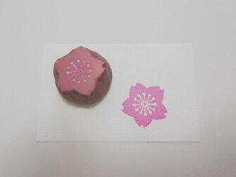 消しゴムはんこ 桜(中心・白ぬき)の画像