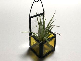 ステンド調エアプランツバケット cube(ミニ)黄 No,2345の画像