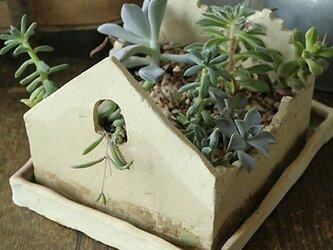 廃屋の植木鉢の画像