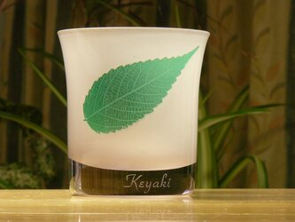 葉っぱロックグラス ケヤキ(1個)の画像