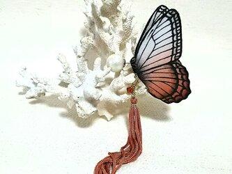 蝶のピアス 大 (モルフォ系)の画像