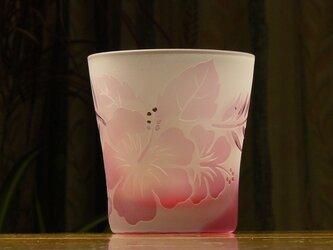 ハイビスカスの ロックグラス ピンク (1個)の画像