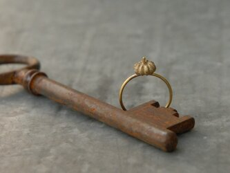 小さな実のリングの画像