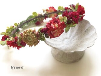 赤い小花の花冠の画像