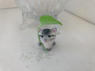 雨宿り猫さん(黒トラ)の画像