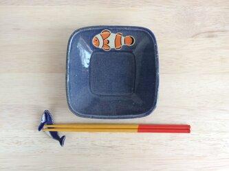 浅角鉢(カクレクマノミ)の画像
