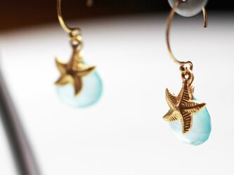 送料無料 14kgf hook earrings 天然石 ピアス (ヒトデ カルセドニー)の画像