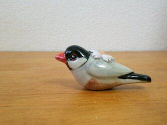 桜文鳥&サクラ 花小鳥/小(陶)の画像