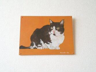 猫イラスト「なにみてるの?」原画(アクリル板つき)の画像