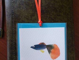 しおり(熱帯魚 グッピー a)【はり絵 原画】の画像