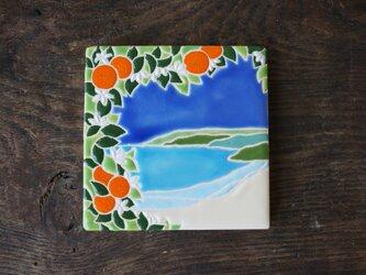 オレンジとビーチ Naranjas y Playaの画像
