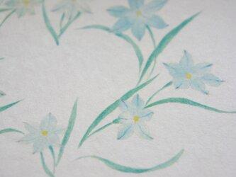 絵葉書「韮の花」の画像