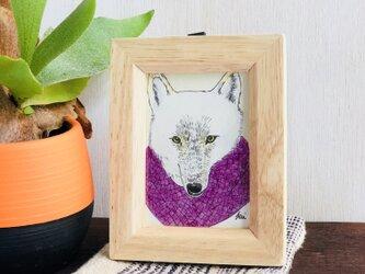 nit  and wolf. パープルのスヌードと狼。の画像