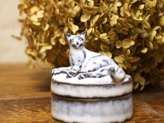 【受注制作】寝ころび猫のミニミニオブジェの宝物入れの画像
