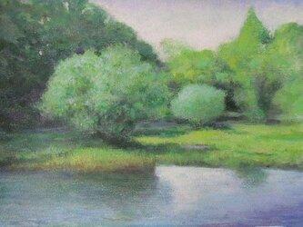 川べりの風とみどりの画像