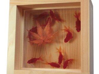 金魚アート  「扇 紅葉」 プレゼント もみじ プリザーブドフラワー 誕生日 結婚 退職 還暦 祝い お中元 夏 涼しげの画像
