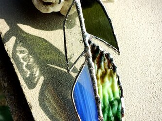 羽ガラス*Greenの画像