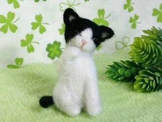 【オーダーメイド】羊毛猫*マスコット*Sサイズの画像