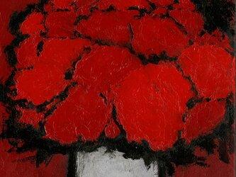 赤い部屋の赤い花 #002の画像