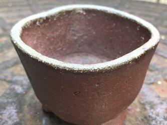 植木鉢(2) 秋山和香 作の画像